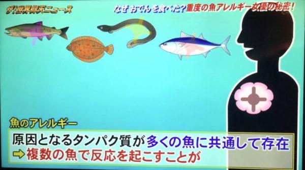 魚アレルギーの特徴