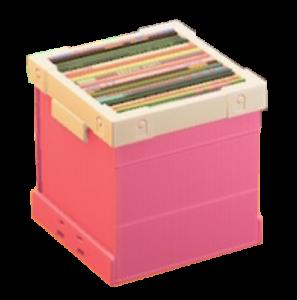 あつまれどうぶつの森レコードボックス